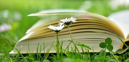 book-2304389_640.jpg